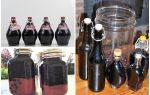 Вино из терна в домашних условиях: простой рецепт