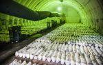 Как вырастить шампиньоны в домашних условиях в подвале