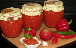 Аджика из тыквы: рецепт приготовления и компоненты