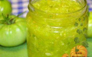 Аджика из зеленых помидоров: лучшие рецепты на зиму