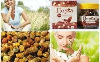 От чего принимают пергу пчелиную: полезные свойства и противопоказания для здоровья, от чего помогает