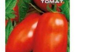 Семена лучших сортов томатов для Ростовской области: обзор и названия