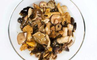 Рецепты икры из сухих грибов Пальчики оближешь: правила приготовления в домашних условиях