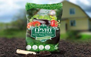 Почва для рассады баклажанов