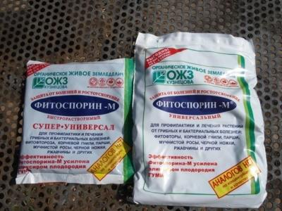 Обработка томатов фитоспорином от фитофторы
