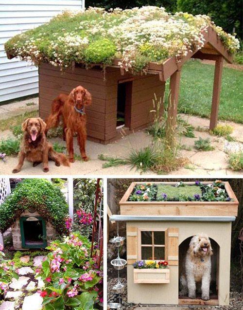 Будка для собаки из поддонов