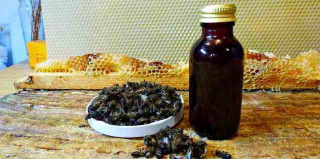 Пчелиный подмор: настойка на водке, на спирту, при каких заболеваниях и как принимать, рецепты