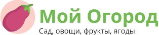 Выращивание пекинской капусты в Сибири: описание