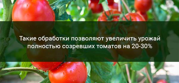 Удобрение томатов йодом