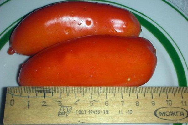 Томат Банан красный: описание сорта, фото, отзывы