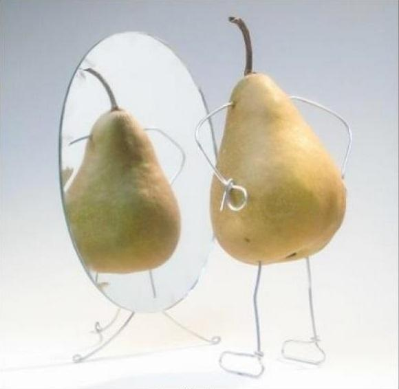 Груша Пакхам: описание сорта, фото, отзывы, калорийность, БЖУ, где растет
