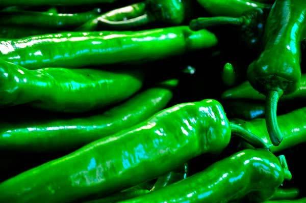 Сорта зеленого перца