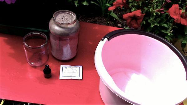 Подкормка помидор в период плодоношения