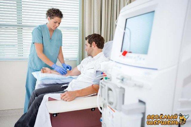 Прополис при онкологии: лечение рака мочевого пузыря, молочной железы, кишечника, желудка, рецепты, как принимать
