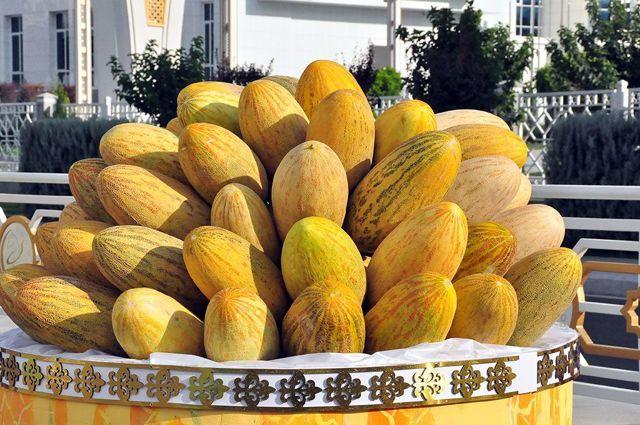 Дыня Гуляби: описание, сорта, калорийность, полезные свойства, особенности выращивания