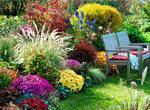 Томат Медовый салют: описание сорта, фото, отзывы, урожайность