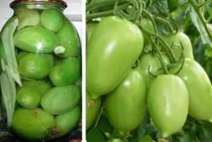Засолка зеленых помидор с горчицей: в кастрюле, холодным способом, рецепты