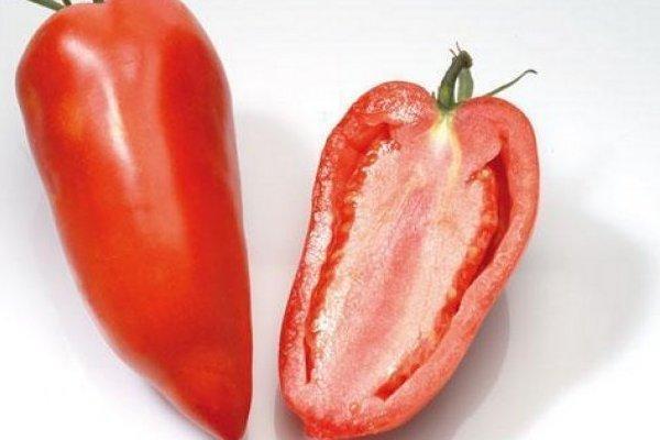 Томат Корнабель f1: описание сорта, урожайность, фото, отзывы