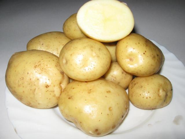 Картофель Санте: описание сорта, фото, отзывы