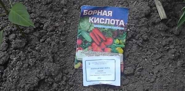 Подкормка минеральными удобрениями помидор
