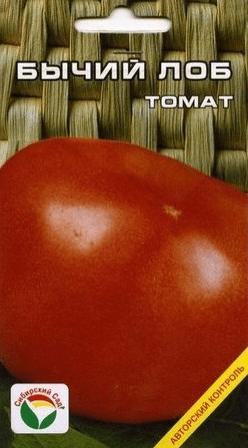 Томат Бычий Лоб: описание сорта, фото, отзывы