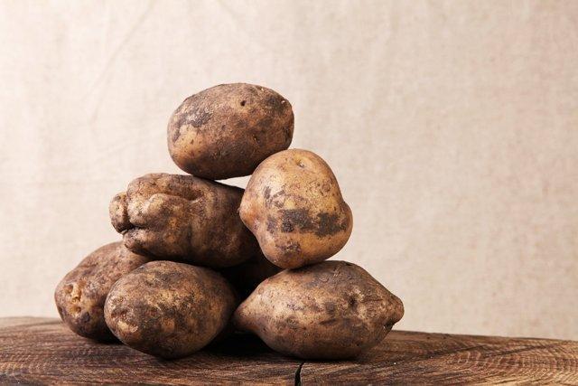 Картофель Лорх: описание сорта, фото, отзывы