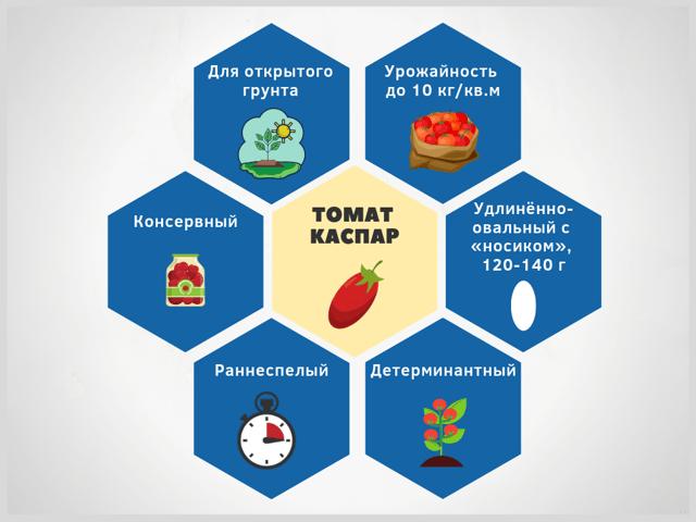 Томат Каспар: характеристика и описание сорта