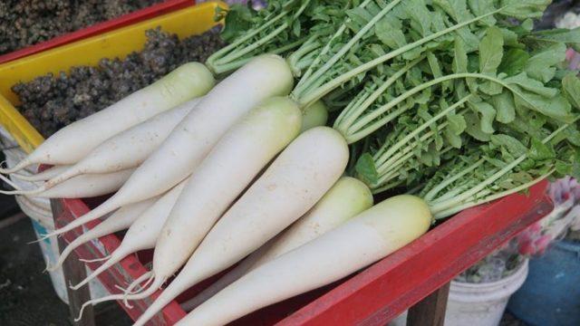 Основные сорта белой моркови