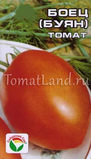 Томат Вова Путин: описание и характеристики сорта, отзывы, фото