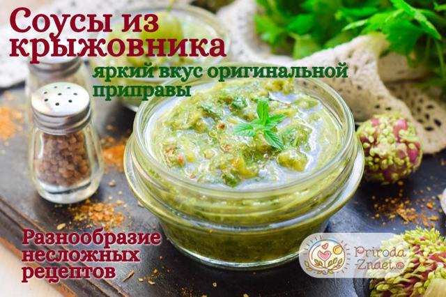 Соус из крыжовника к мясу на зиму: рецепты с чесноком