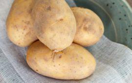 Картофель Вега: описание сорта, фото, отзывы