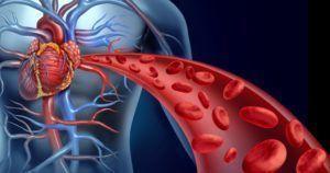 Прополис от простатита и аденомы простаты: как лечить в домашних условиях