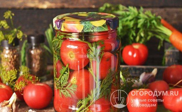 Помидоры с морковной ботвой на зиму: рецепты, как солить, мариновать, консервировать