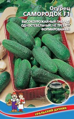 Огурец Каскад: описание сорта, выращивание, отзывы, фото