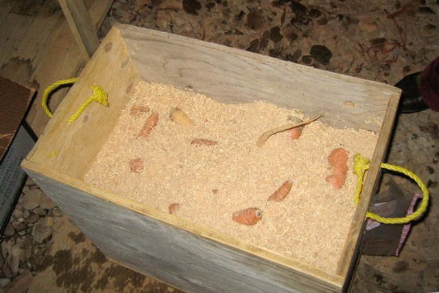 Ящик для хранения картофеля на балконе зимой: как сделать своими руками