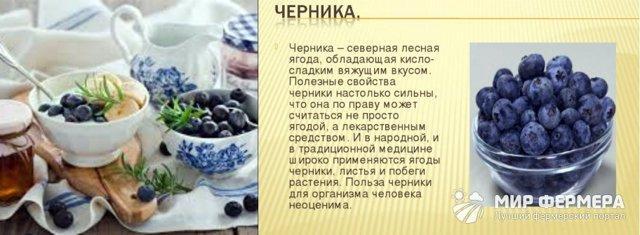 Черника в сиропе: польза, рецепты с фото