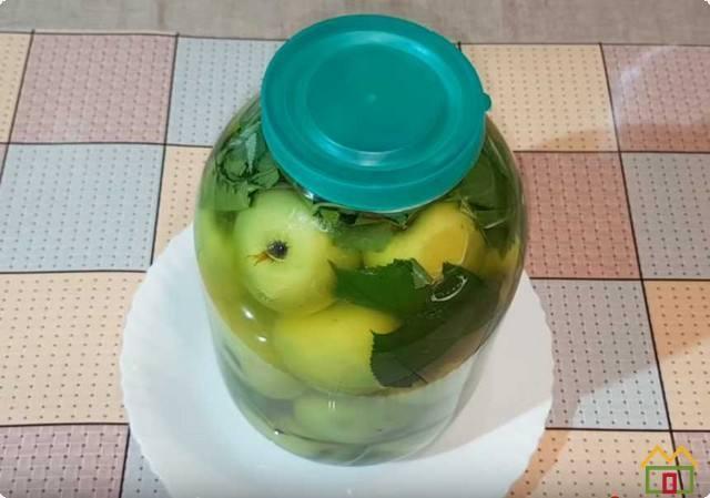 Моченые яблоки на зиму: простой рецепт с фото