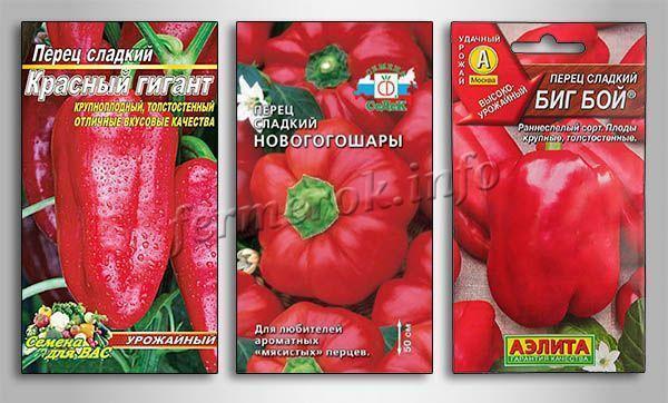 Сорта толстостенных перцев для Сибири
