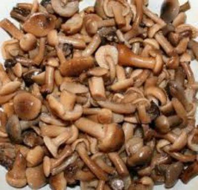 Маринованные опята: самый вкусный рецепт, с уксусом, на зиму, в банках, без стерилизации, без закатки