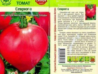 Томат Севрюга: характеристика и описание сорта