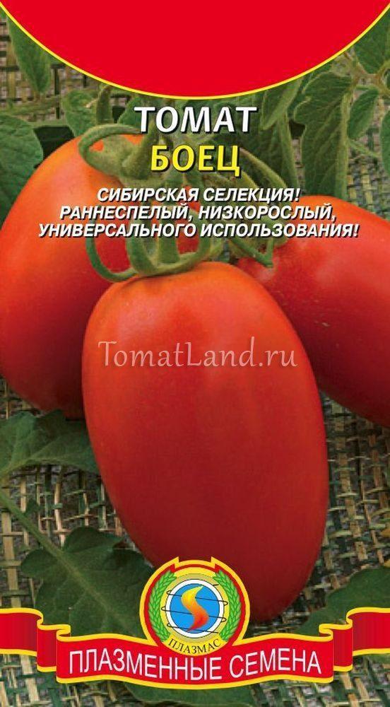 Томат Буян: описание сорта, выращивание, фото, отзывы