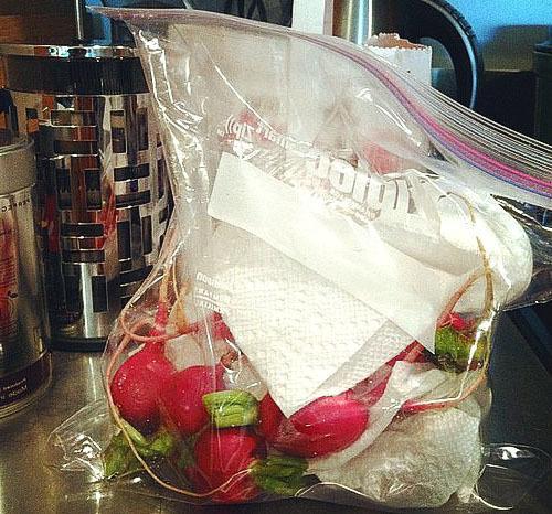 Как хранить дайкон в домашних условиях: в погребе, холодильнике, морозилке