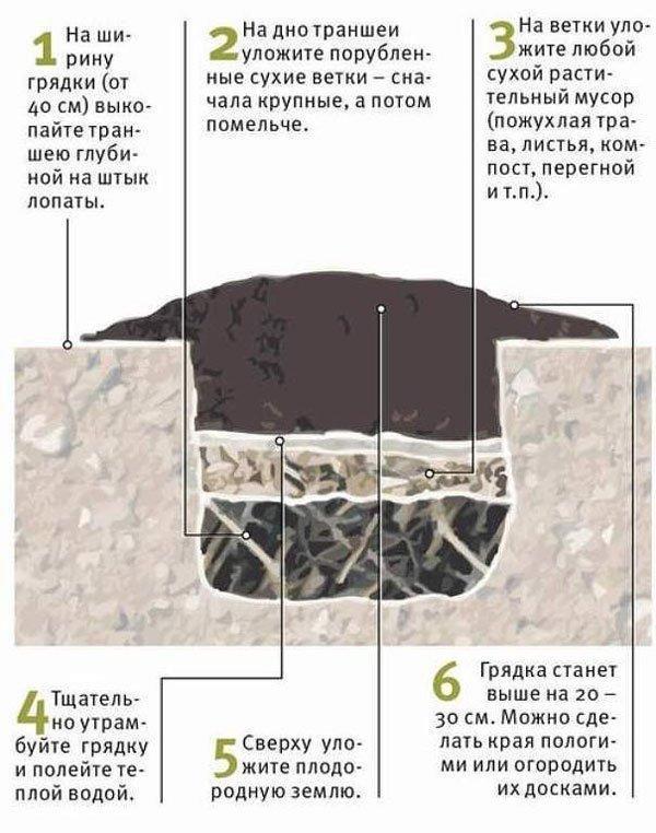 Теплая грядка для огурцов: как сделать осенью своими руками