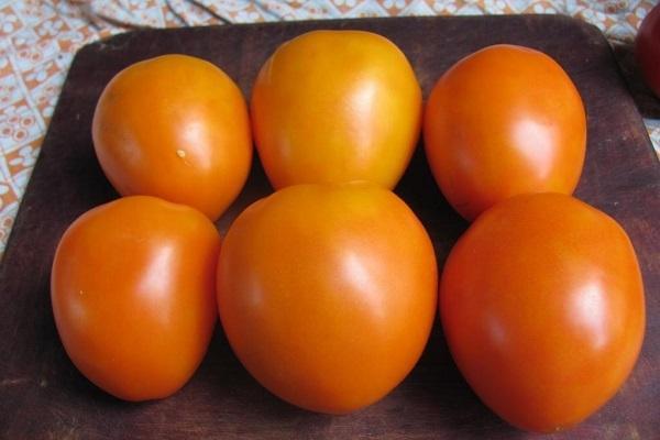 Томат Золотые яйца: отзывы, фото