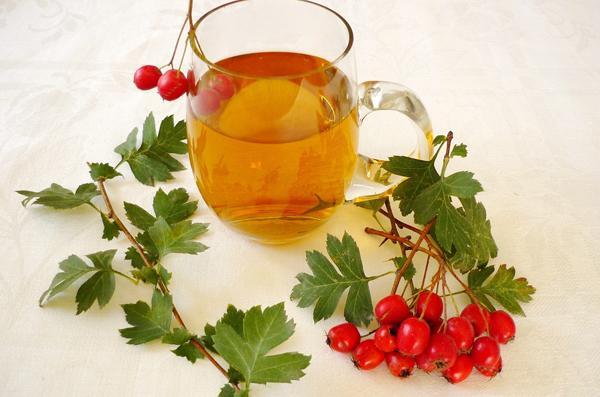 Цветы боярышника: чем полезны, как заваривать и пить, противопоказания