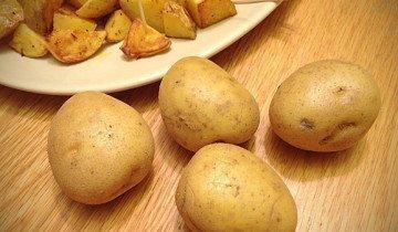 Картофель Тайфун: описание сорта, фото, отзывы, урожайность