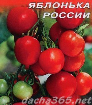 Томат Яблонька России характеристика и описание сорта