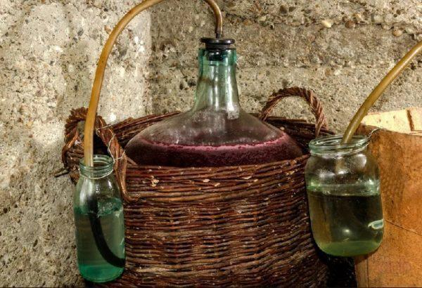 Вино из винограда Изабелла в домашних условиях: простой рецепт