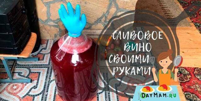 Домашнее вино из сливы: пошаговый рецепт