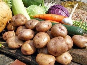 Картофель Синеглазка: характеристика, отзывы, похожие сорта, как выбрать